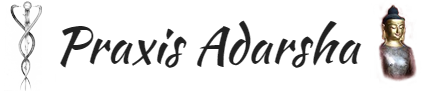 Praxis Adarsha Logo
